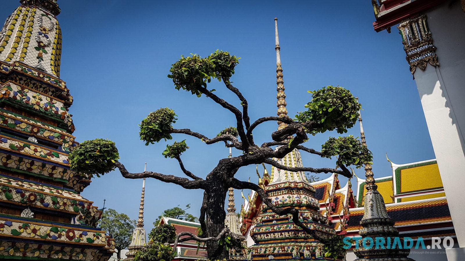 Temple Wat Pho Thailand