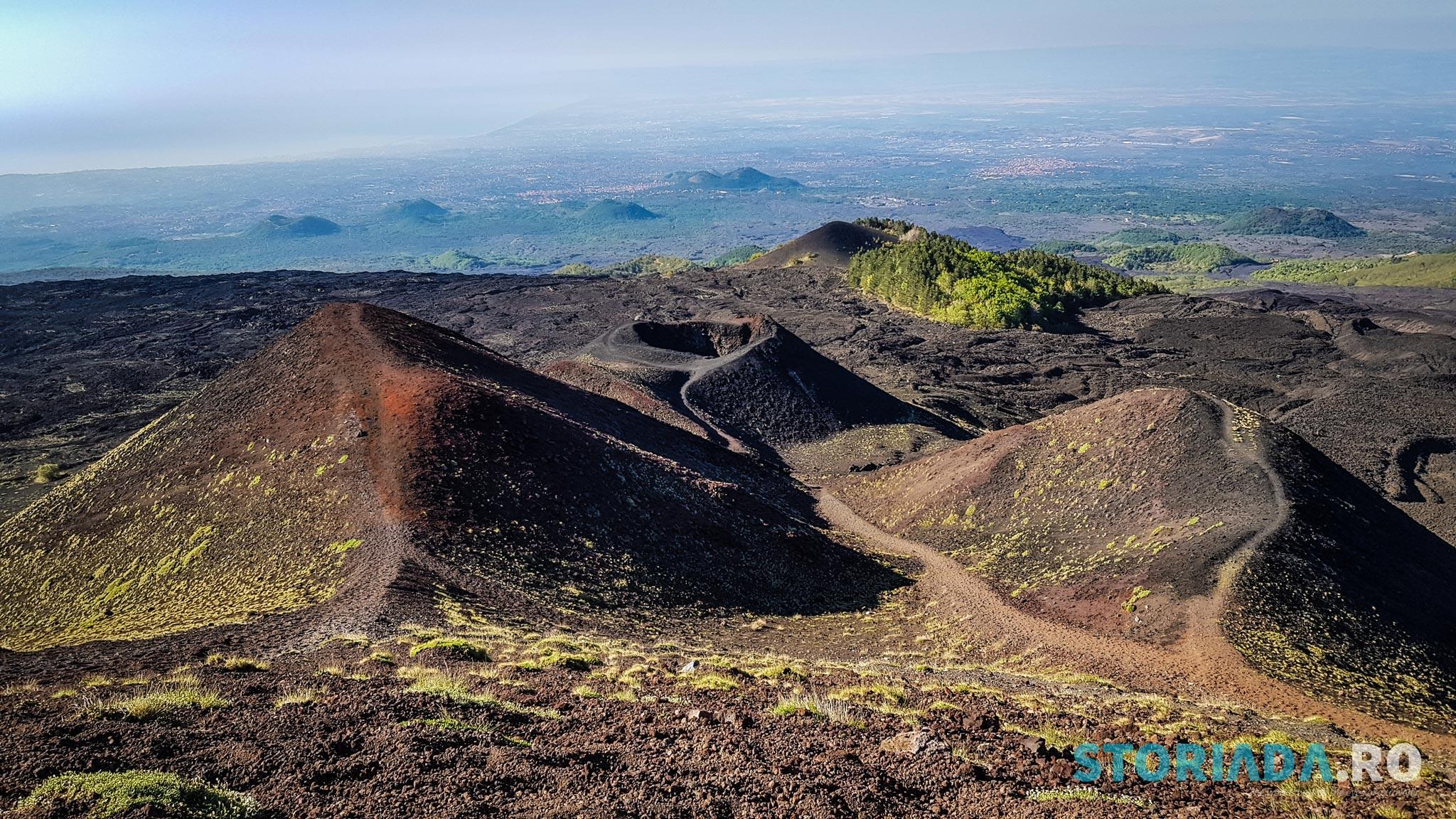 Crateri Silvestri