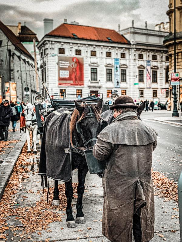 Baroc, Viena (Austria)