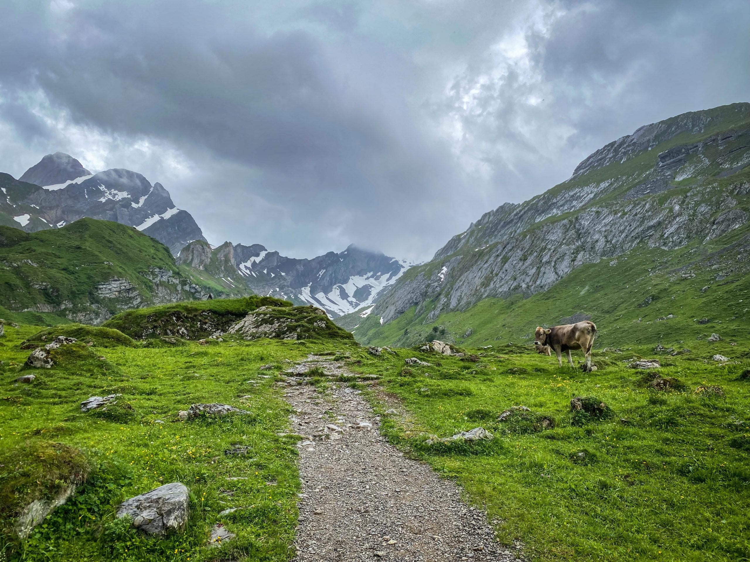 Appenzell, Elveția