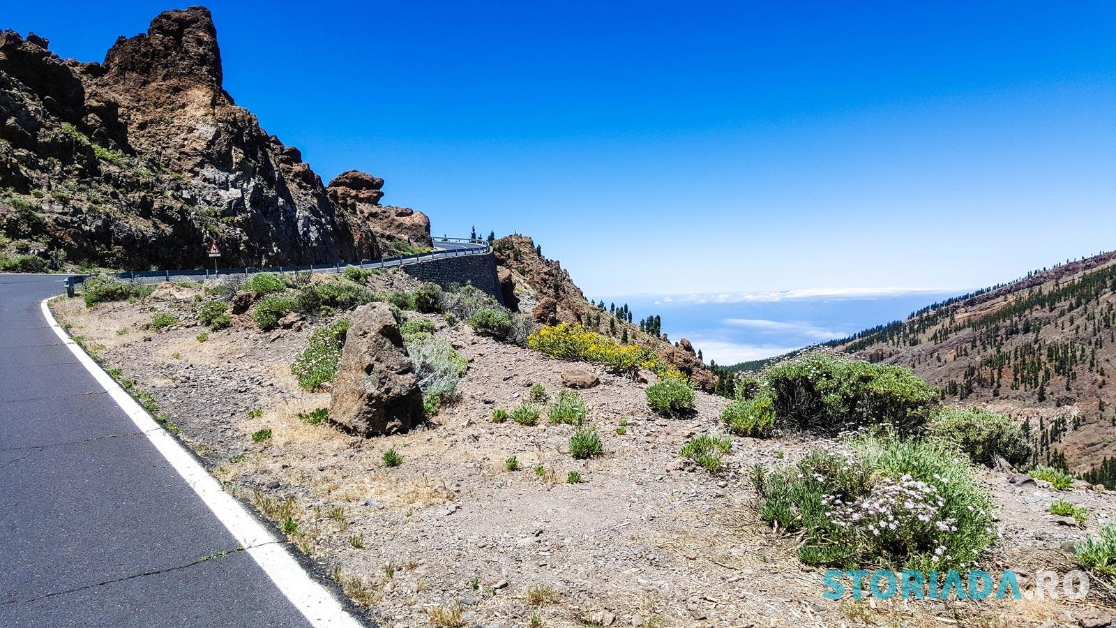 Marea alpină, Tenerife
